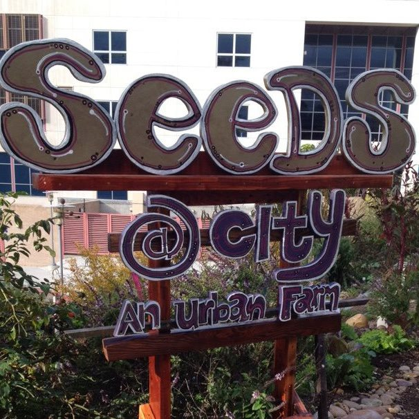 Community Garden - Seeds@City San Diego CC