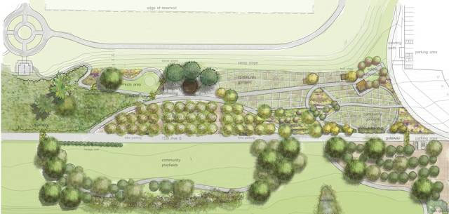 Seattle's Beacon Food Forest Design
