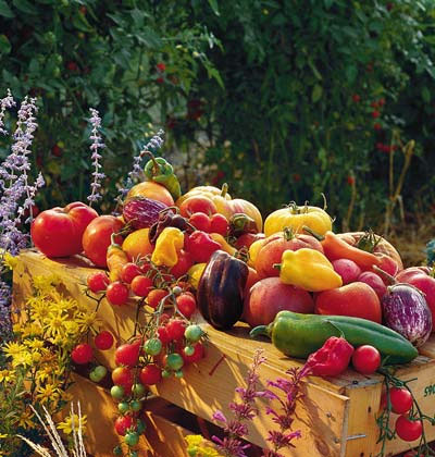 Summer Veggies Harvest and Flowers