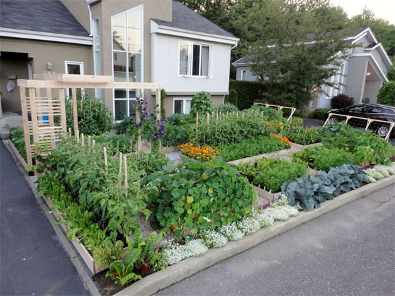 Charming Food Not Lawn Formal Veggie Garden