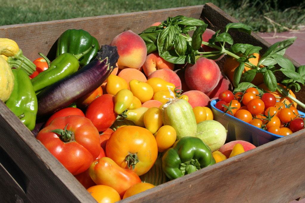 Summer Veggies Box