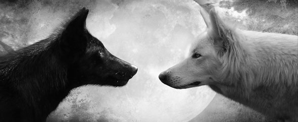 2015 Full Wolf Moon Capricorn Cancer