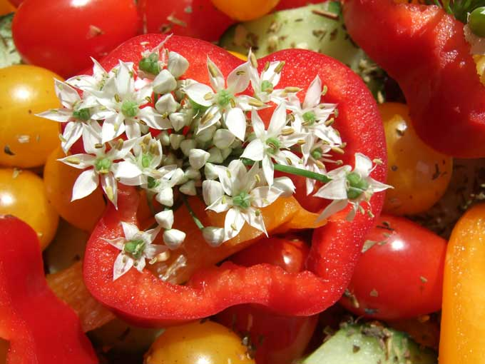 Pepper, Tomatoes, Edible Flowers!