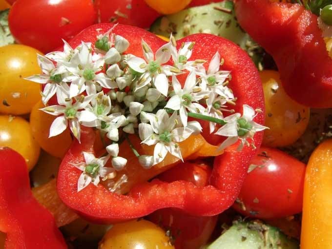 Tasty Edible Garlic Flowers on Red Bell Pepper!