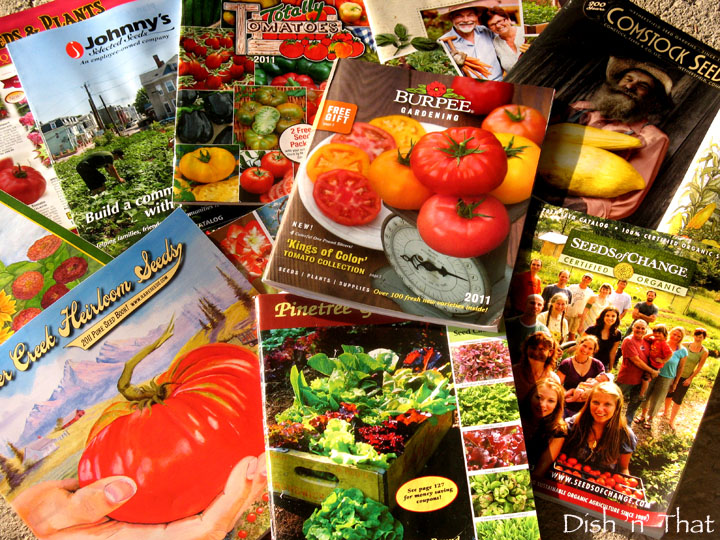 Seed Catalogs! Perfect Holiday Gifts along with a Gift Certificate, of course! :)