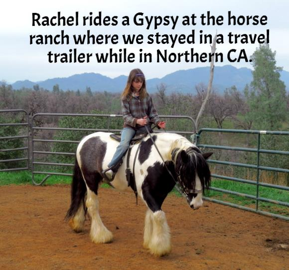 Rachel rides a Gypsy at the horse ranch where we stayed in a travel trailer while in Northern CA.