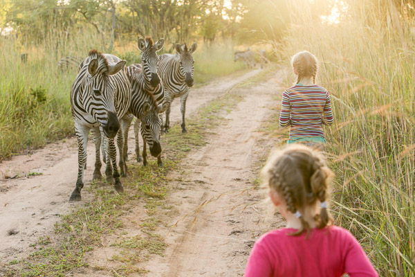 Girls and zebras