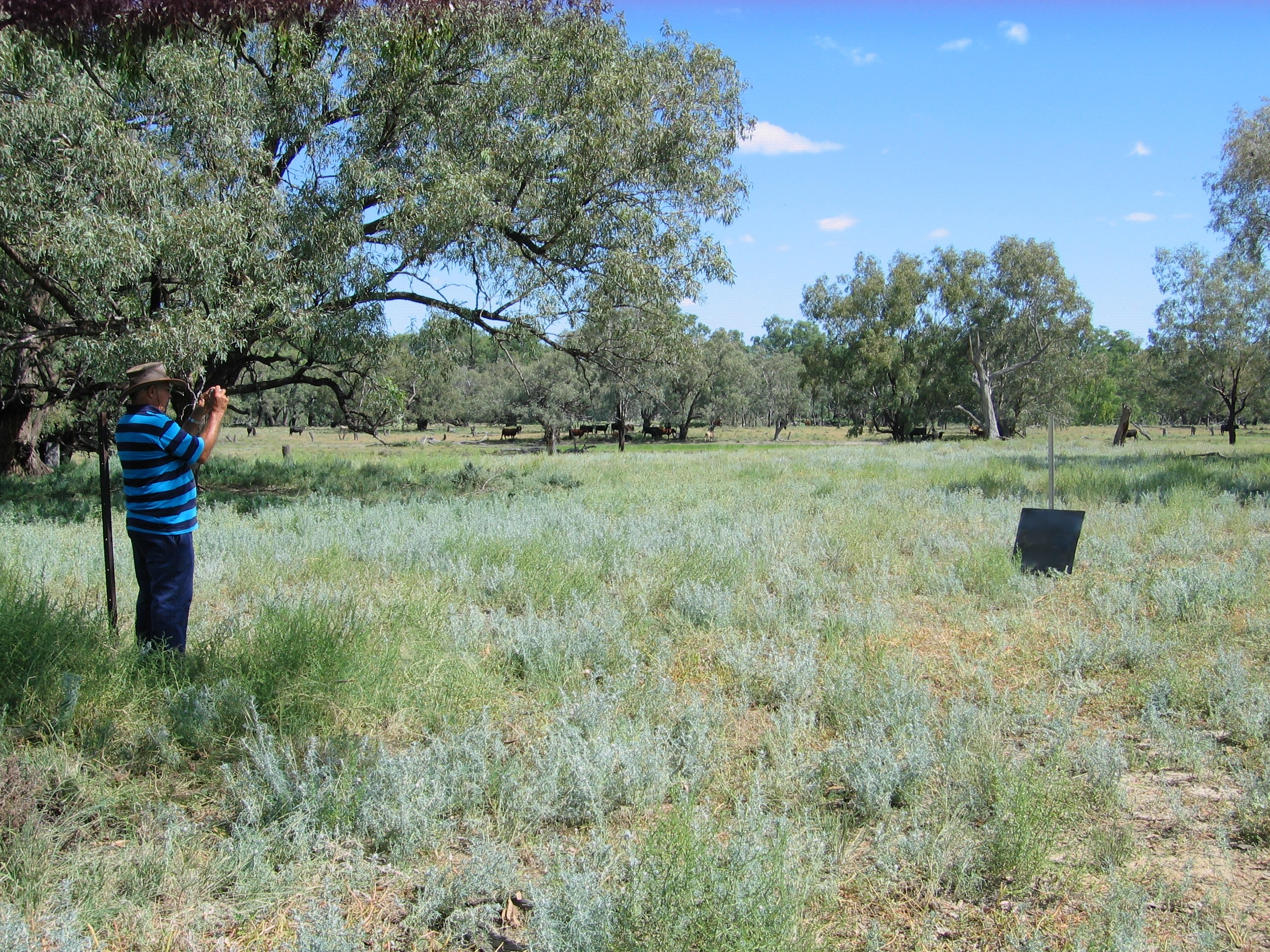 Blackie Gordon of Western Local Land Services photographing a monitoring point