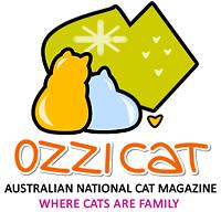Ozzi Cat | Australian National Cat Magazine