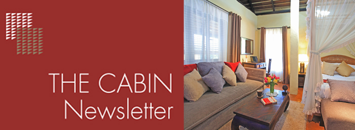 The Cabin Newsletter