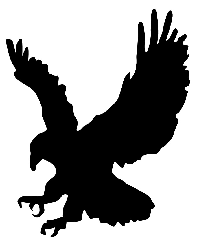 Image of an eagle