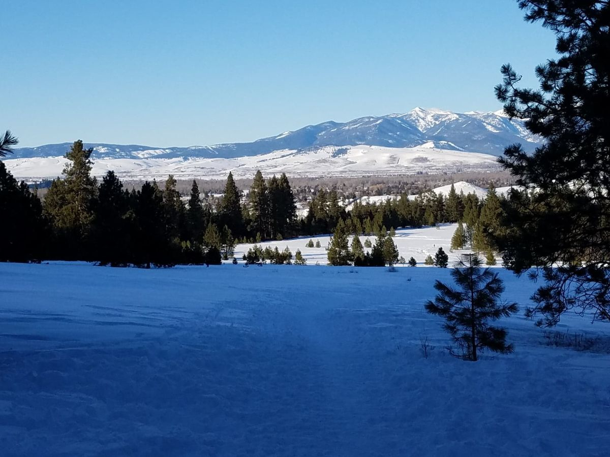 early spring in Montana, Rattlesnake Mountains, Missoula