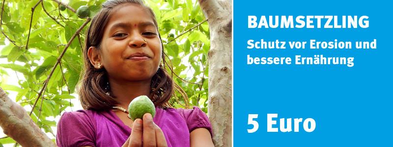 ChildFund Spendenshop: Baumsetzling