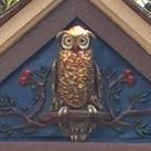 Noyes Owl