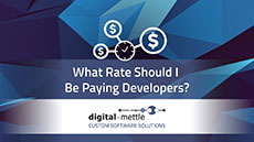 What Rate Should I Be Paying Developers?