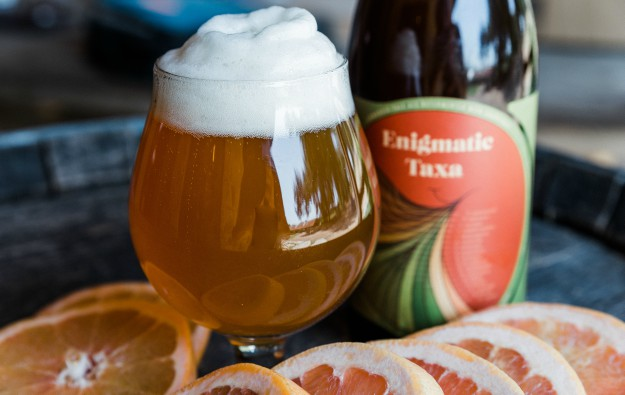 jester, Jester King & Perennial Artisan Ales Get Enigmatic!