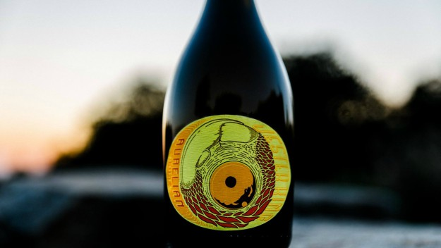 jester, Jester King Releases Two Newbies This Friday!