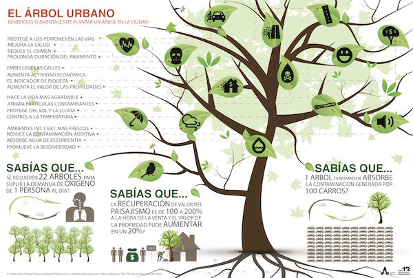 El árbol urbano