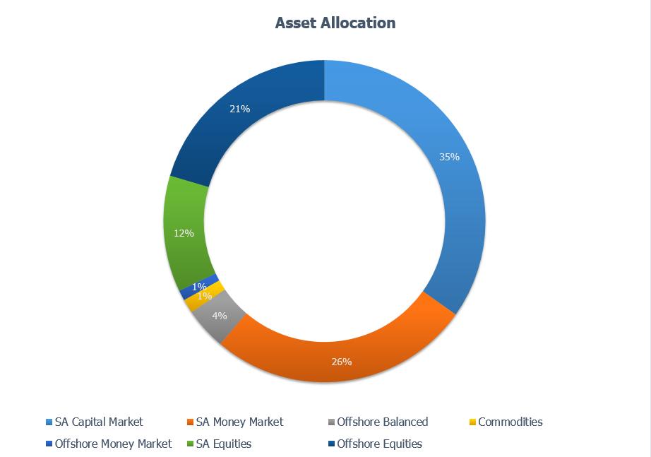 Figure 1: Asset Allocation