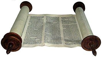 34a490e9 7cbd 4010 8fdb d26b5d302836 - Help Save Our Oldest Torah - Dunedin