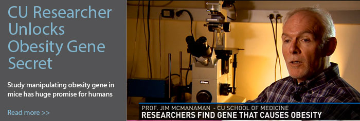 CU Researcher Unlocks Obesity Gene Secret. Study manipulating obesity gene in mice has huge promise for humans. Read more>>