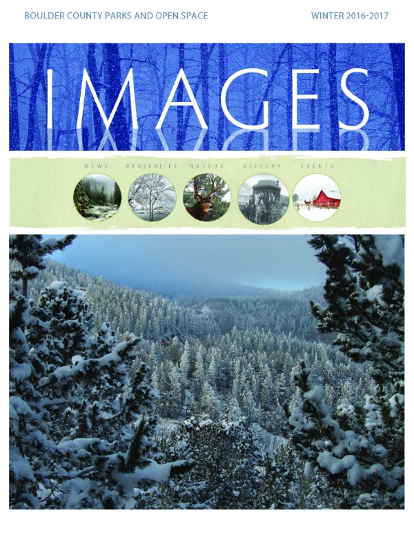 Spring issue of Images magazine