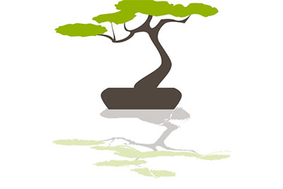 bonsai tree with water reflection