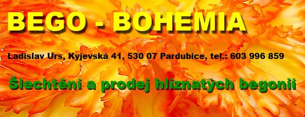 www.begonie.cz