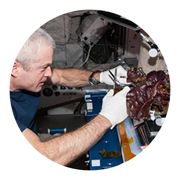 Astronaut preparing food in space