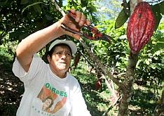 Pěstitelka Juana