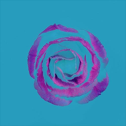 "Listen to➦""""Soulful Cacao Ceremony & Yoga Flow: Hedi Fluteman & Elie Ô"" with Nadine Norman & Surpreet Adi Kaur"