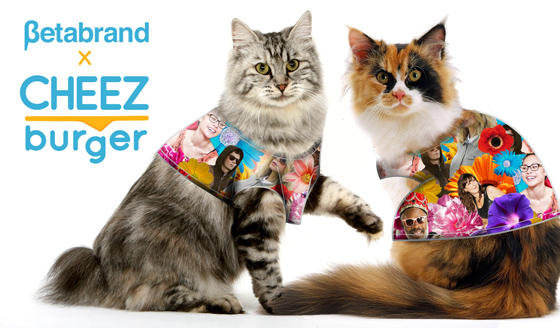 Human-themed clothes for cats!