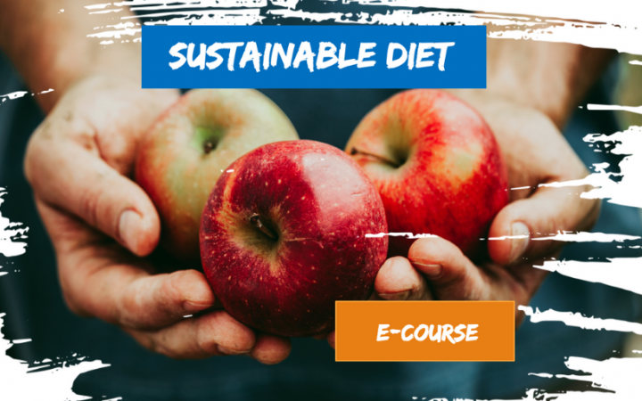 INNOVATIVE E-LEARNING COURSE ON SUSTAINABLE DIET