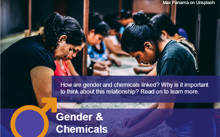 NEW MODULE ON GENDER, CHEMICALS AND WASTE
