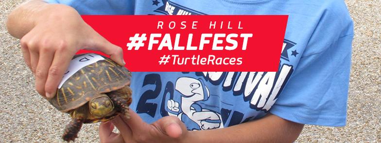 Turtle Races