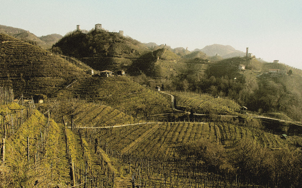 Image of the Hilled Vineyards in Farra di Soligo, Italy
