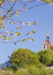 FRÜHLINGSinspiration 5.–6. Mai 2018, Chrischona-Campus | chrischona.org/fruehling
