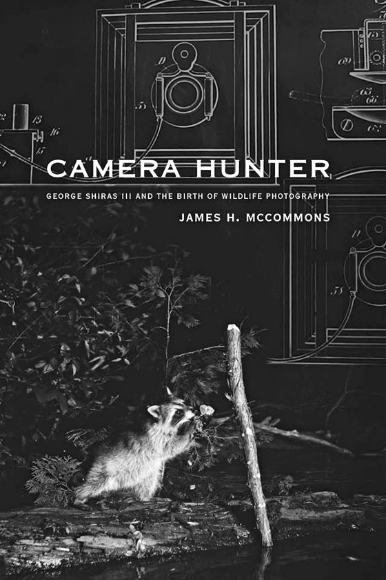 A racoon foraging at night was captured by George Shiras III in one of the earliest wildlife photos.