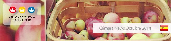 Camara_news_octubre_2014