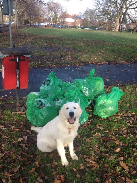 Lots of bags collected