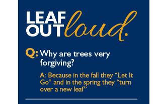 Leaf outloud.