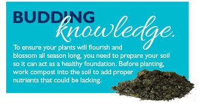 Budding knowledge.