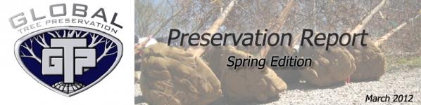 Global Tree Preservation