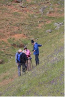 Volunteers working on distant hillside