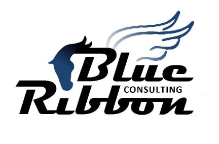 Blue Ribbon Consulting