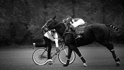 Bike Polo Player vs Horse Polo Player