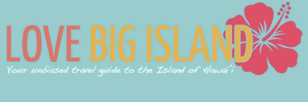 logo lovebigisland.com