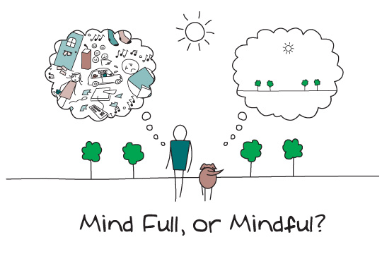The Whole Developer: Mindfulness Over Matter (Part 3 of 8)