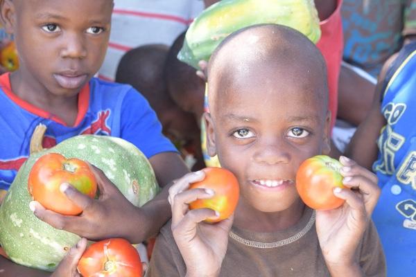 haiti produce