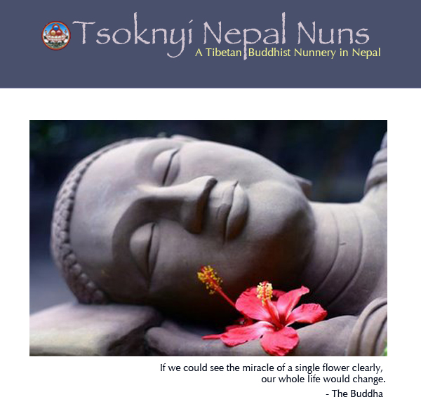 Happy News Years from the Tsoknyi Nepal Nuns